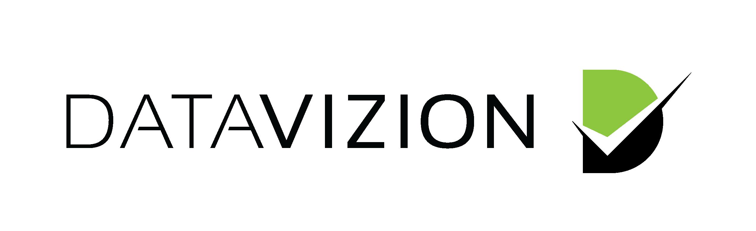 DataVizion Logo